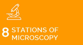 8 Stations of Microscopy